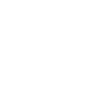 DAYTRIP