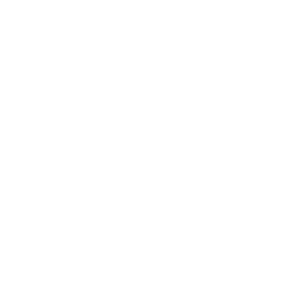 YOUNGBRIDGE